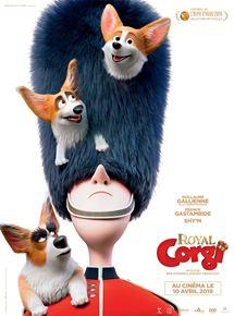 royal-corgi