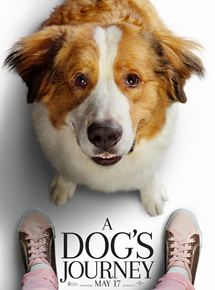 a-dog's-journey